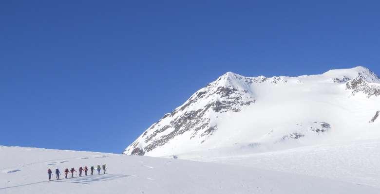 Punta d'Arbola  3.235 m. scialpinismo